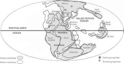 Palaeogeographical World Maps