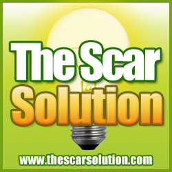 The Scar Solution Book By Sean Lowry