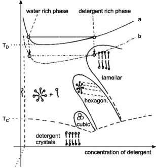 Micelle Diagrams