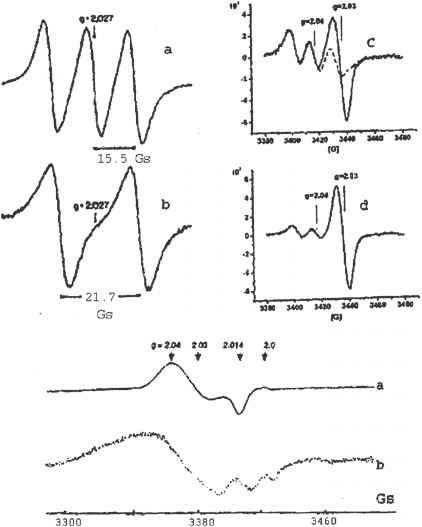 vibration spectroscopy of nitrosyl ligands in dnic