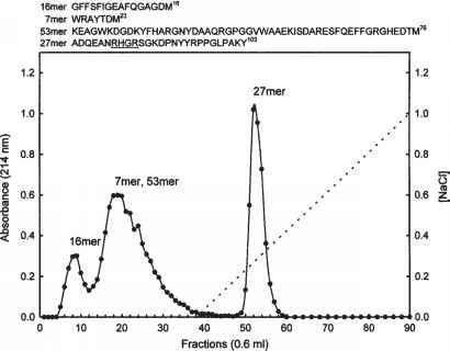 High Pressure Liquid Chromatography Hplc Proteoglycan